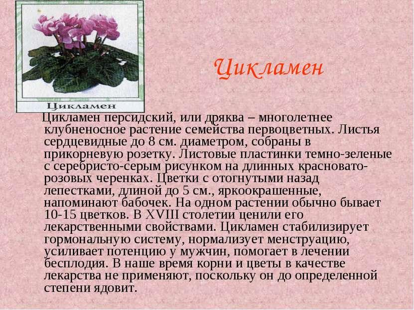 Растения: друзья и враги