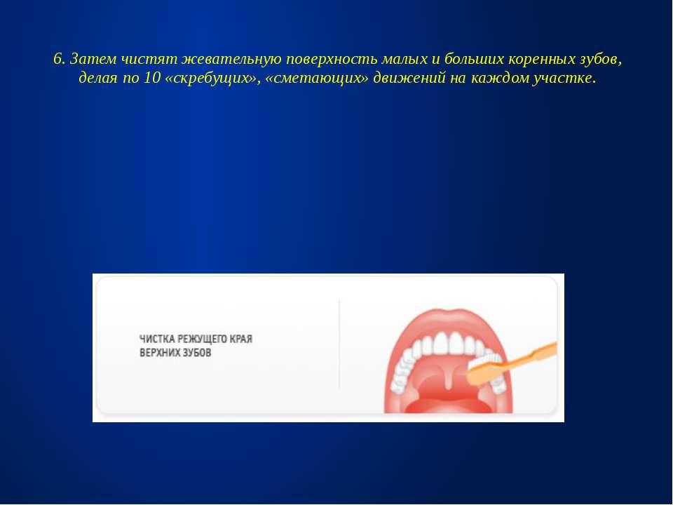 6. Затем чистят жевательную поверхность малых и больших коренных зубов, делая...