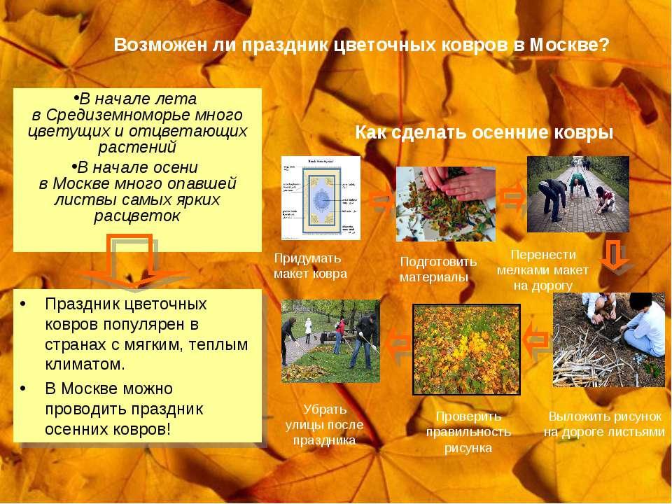 Возможен ли праздник цветочных ковров в Москве? В начале лета в Средиземномор...
