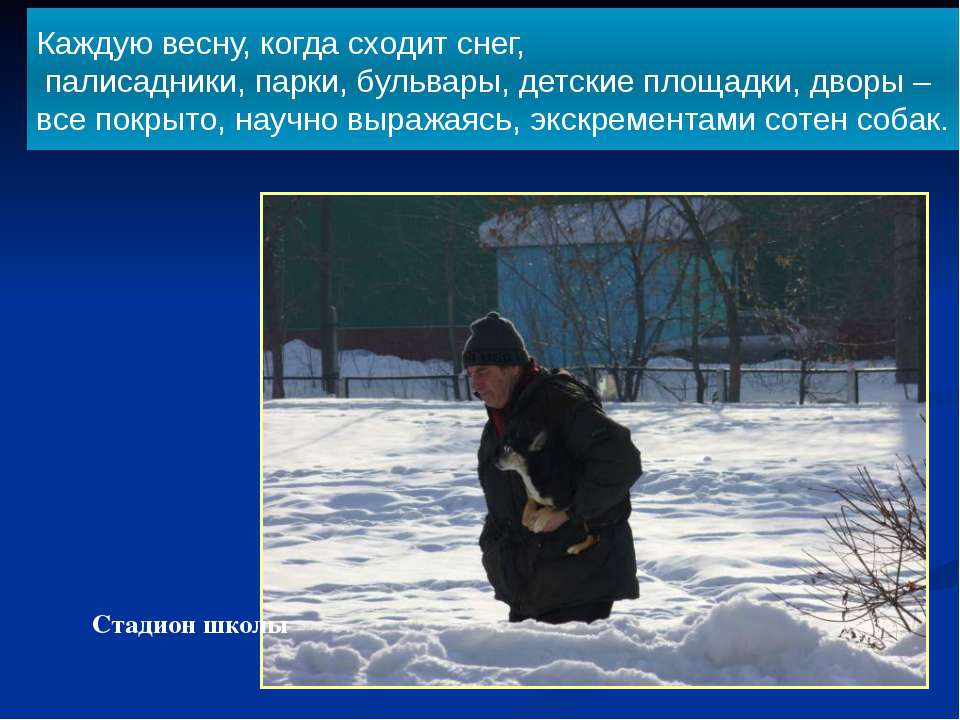 Стадион школы Каждую весну, когда сходит снег, палисадники, парки, бульвары, ...