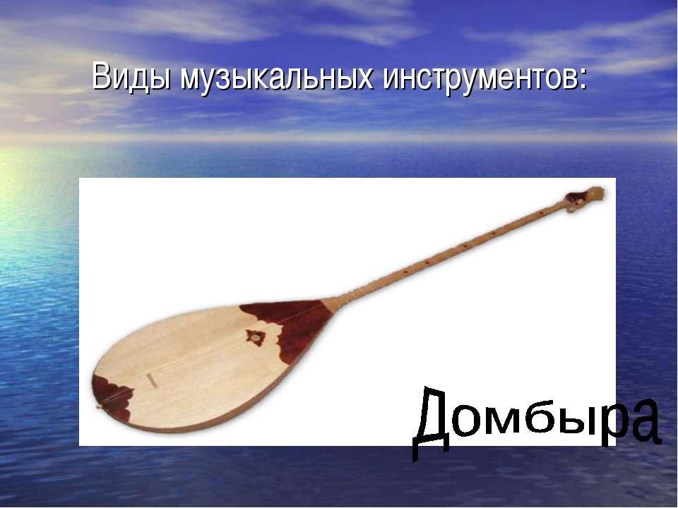 Виды музыкальных инструментов:
