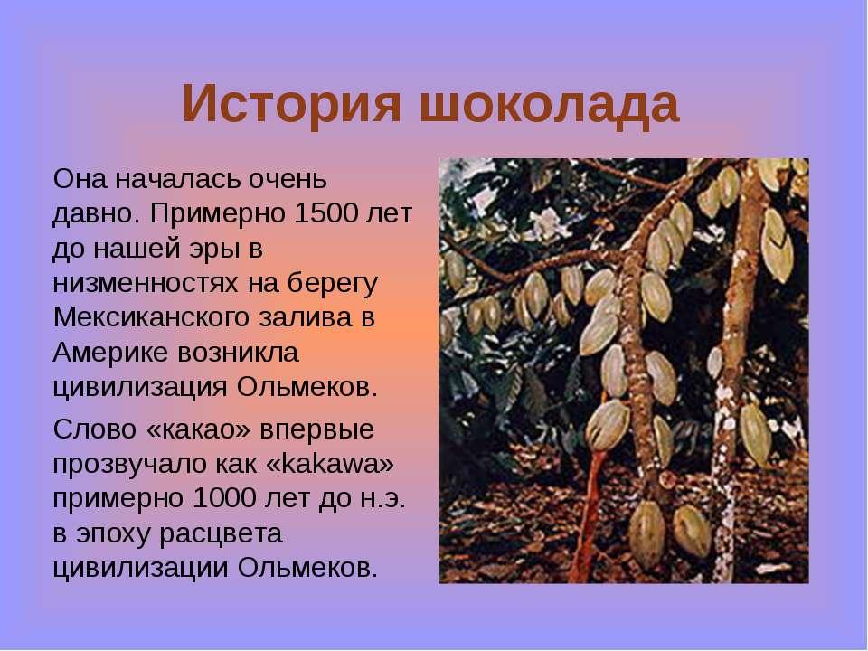 История шоколада Она началась очень давно. Примерно 1500 лет до нашей эры в н...