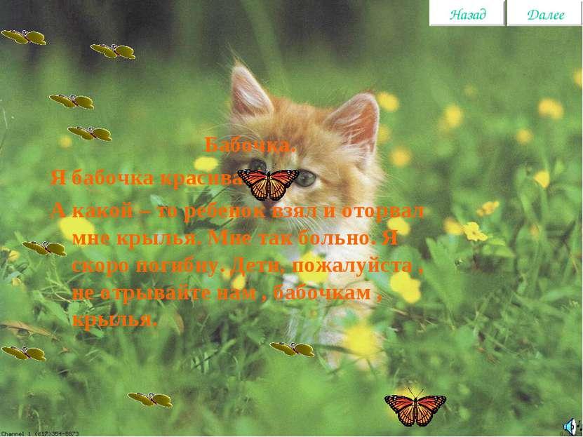 Бабочка. Я бабочка красивая! А какой – то ребенок взял и оторвал мне крылья. ...