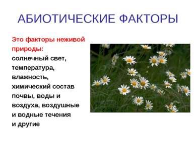АБИОТИЧЕСКИЕ ФАКТОРЫ Это факторы неживой природы: солнечный свет, температура...
