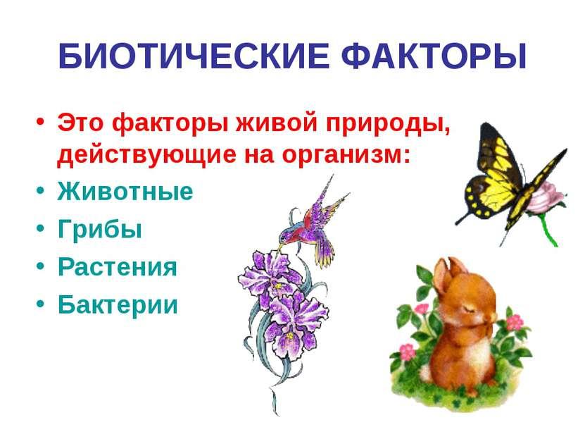 БИОТИЧЕСКИЕ ФАКТОРЫ Это факторы живой природы, действующие на организм: Живот...