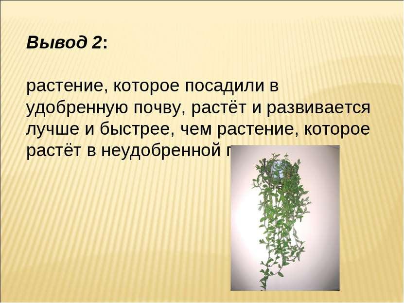 Вывод 2: растение, которое посадили в удобренную почву, растёт и развивается ...