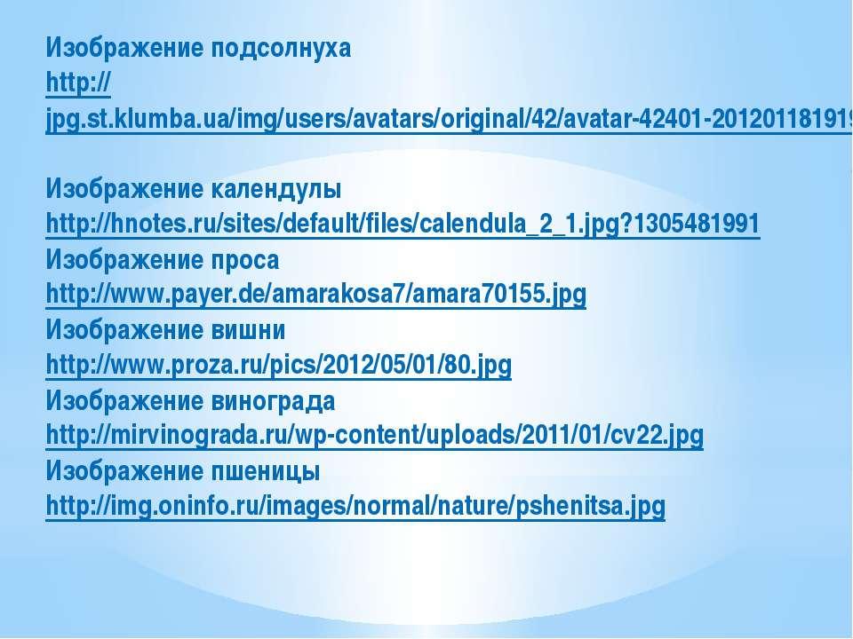 Изображение подсолнуха http://jpg.st.klumba.ua/img/users/avatars/original/42/...