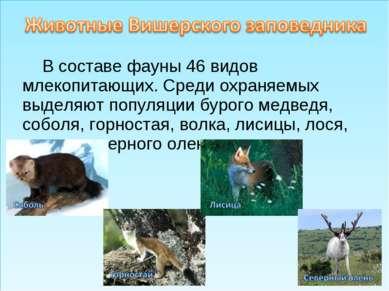 В составе фауны 46 видов млекопитающих. Среди охраняемых выделяют популяции б...