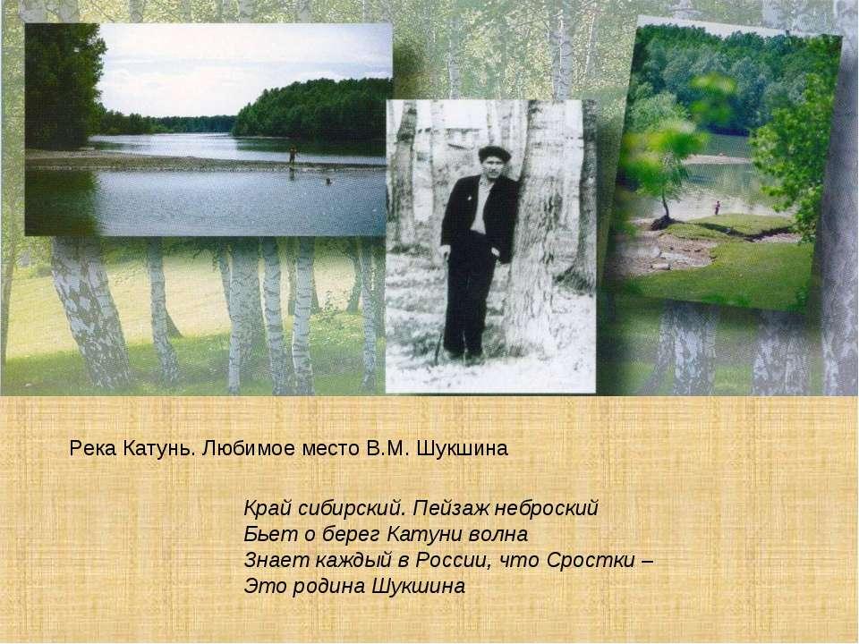 Река Катунь. Любимое место В.М. Шукшина Край сибирский. Пейзаж неброский Бьет...