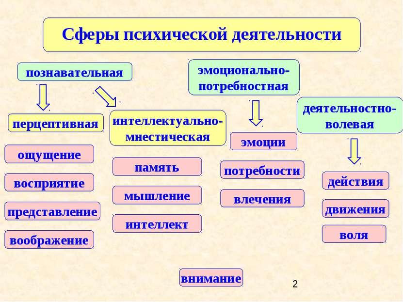 Сферы психической деятельности деятельностно-волевая познавательная эмоционал...