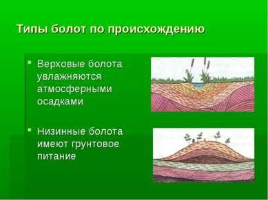 Типы болот по происхождению Верховые болота увлажняются атмосферными осадками...