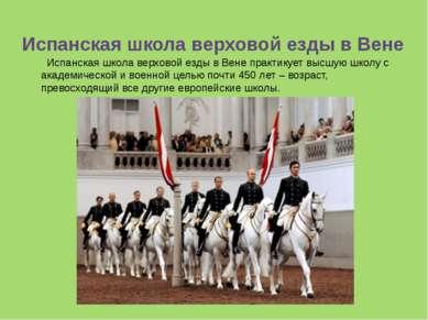 Испанская школа верховой езды в Вене практикует высшую школу с академическо...