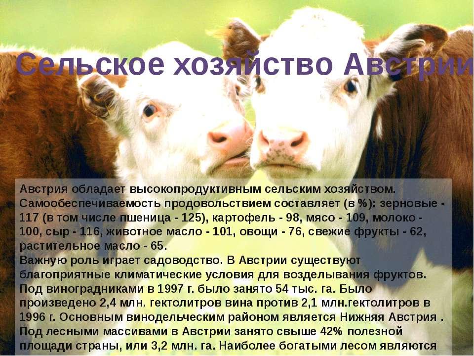 Австрия обладает высокопродуктивным сельским хозяйством. Самообеспечиваемость...