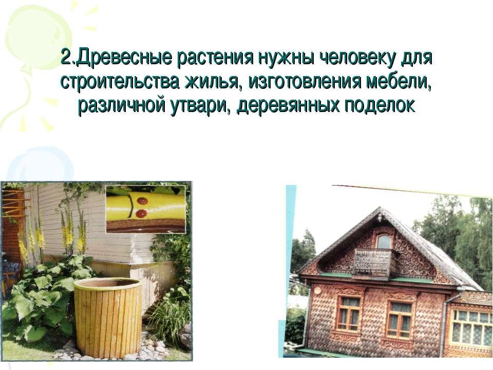2.Древесные растения нужны человеку для строительства жилья, изготовления меб...