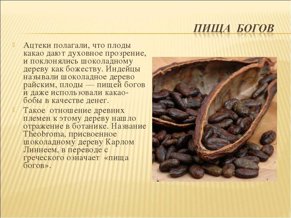 Ацтеки полагали, что плоды какао дают духовное прозрение, и поклонялись шокол...