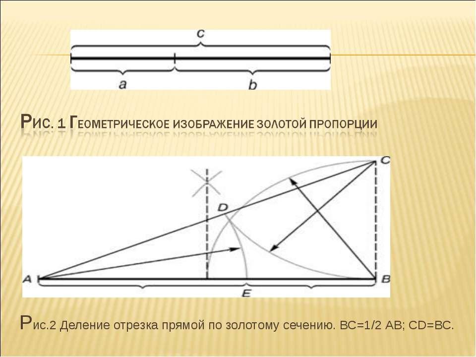 Рис.2 Деление отрезка прямой по золотому сечению. ВС=1/2 АВ; CD=ВС.