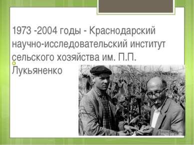 1973 -2004 годы - Краснодарский научно-исследовательский институт сельского х...