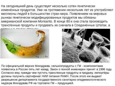 На сегодняшний день существует несколько сотен генетически изменённых продукт...