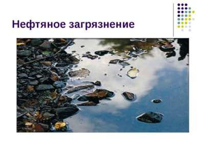 Нефтяное загрязнение