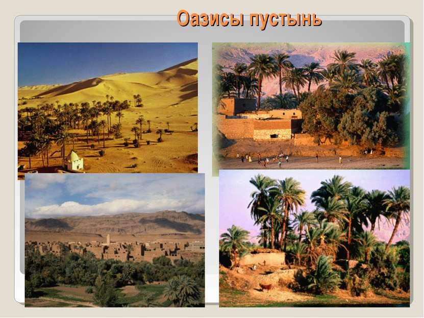Оазисы пустынь