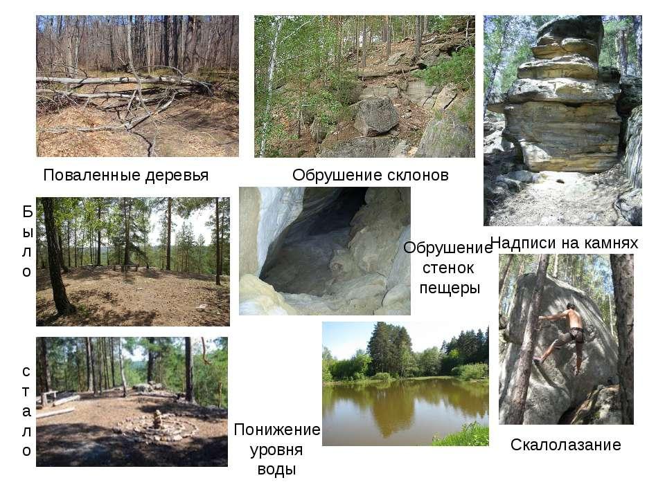 Поваленные деревья Было стало Обрушение склонов Надписи на камнях Скалолазани...