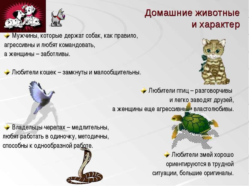 Домашние животные и характер Мужчины, которые держат собак, как правило, агре...