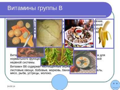 * * Витамин В1 регулирует функции сердечно-сосудистой системы, пищеварительно...