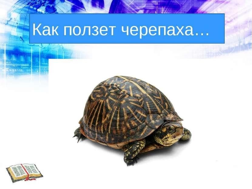 Как ползет черепаха…
