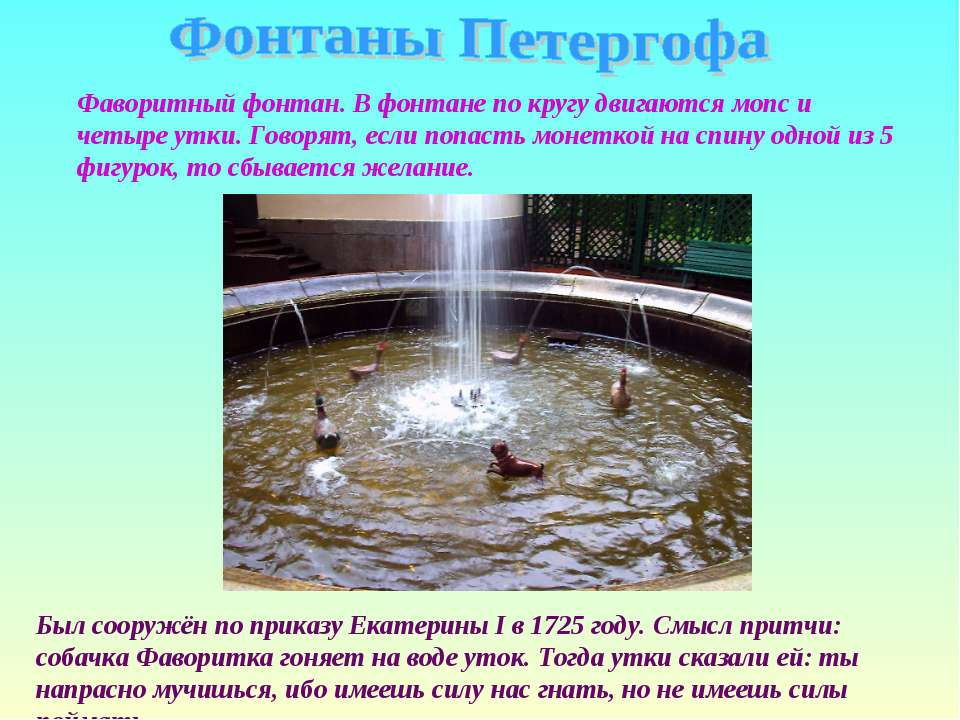 Фаворитный фонтан. В фонтане по кругу двигаются мопс и четыре утки. Говорят, ...