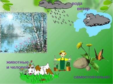 вода ветер животные и человек самостоятельно
