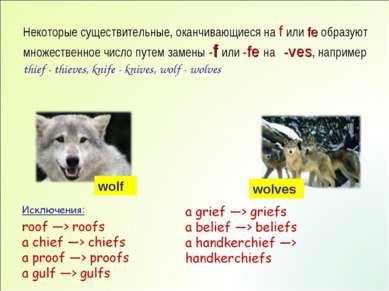 Некоторые существительные, оканчивающиеся на f или fe образуют множественное ...