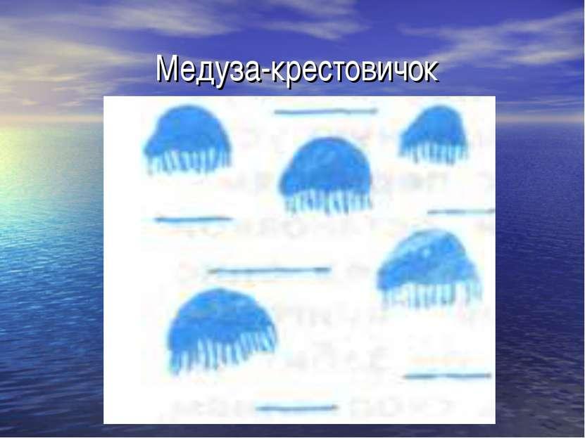 Медуза-крестовичок