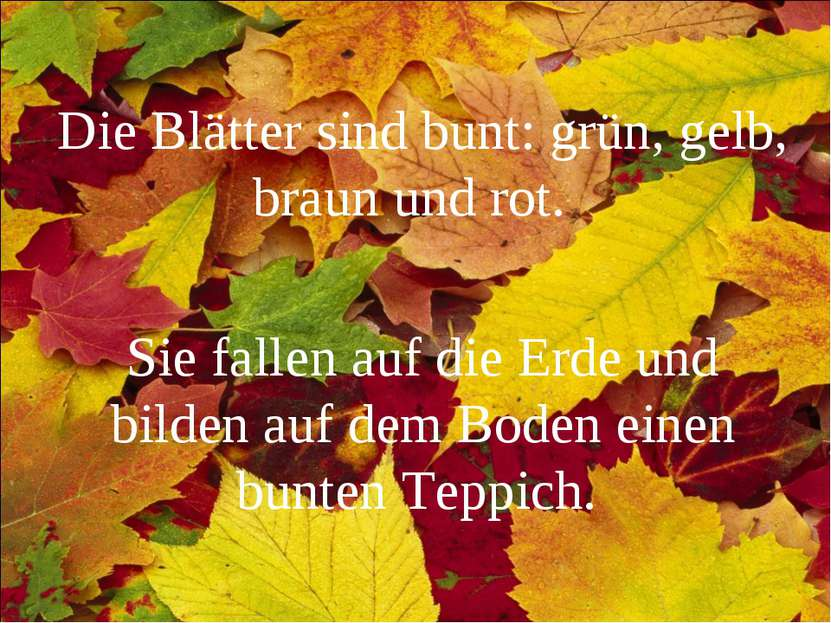 Die Blätter sind bunt: grün, gelb, braun und rot. Sie fallen auf die Erde und...