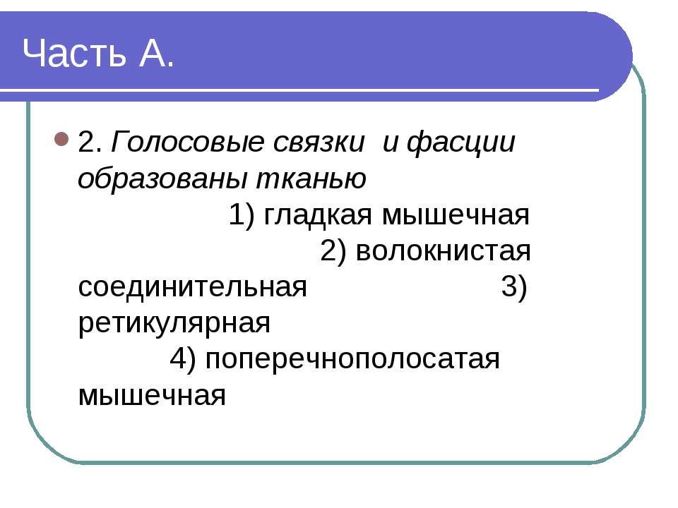 Часть А. 2. Голосовые связки и фасции образованы тканью 1) гладкая мышечная 2...
