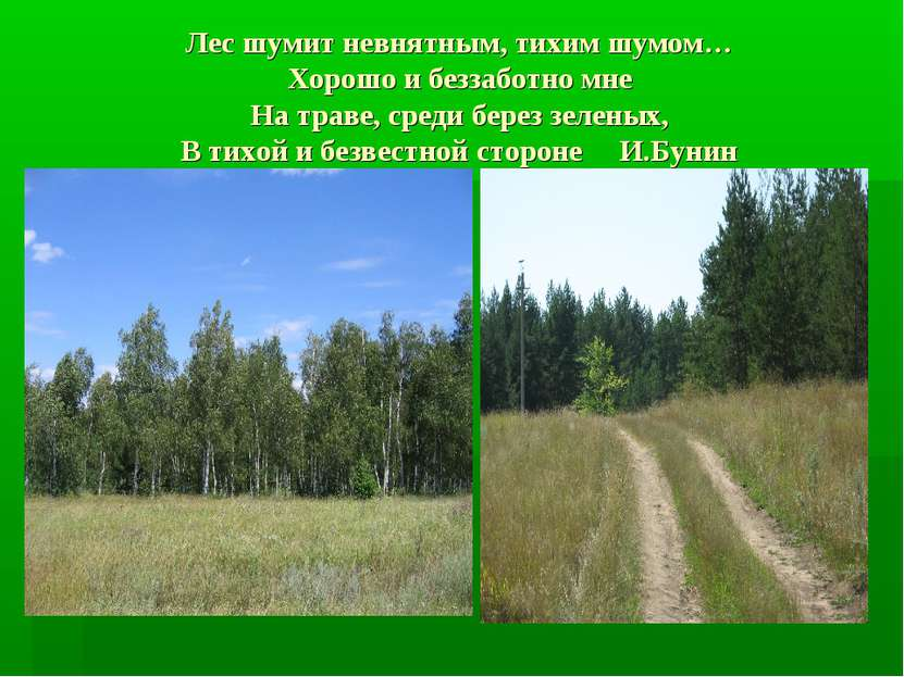 Лес шумит невнятным, тихим шумом… Хорошо и беззаботно мне На траве, среди бер...