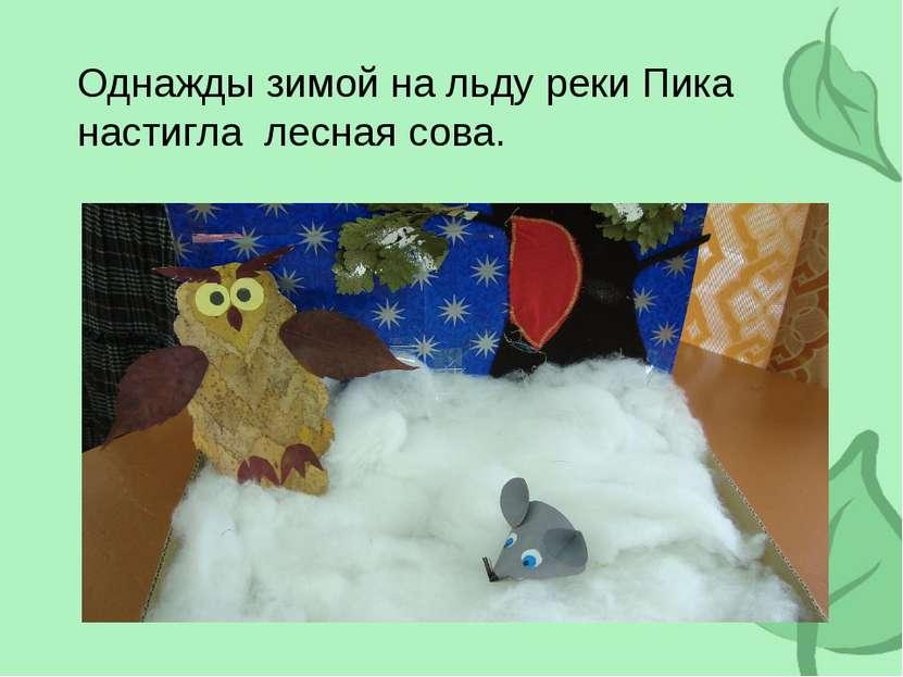 Однажды зимой на льду реки Пика настигла лесная сова.