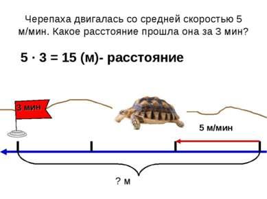 Черепаха двигалась со средней скоростью 5 м/мин. Какое расстояние прошла она ...
