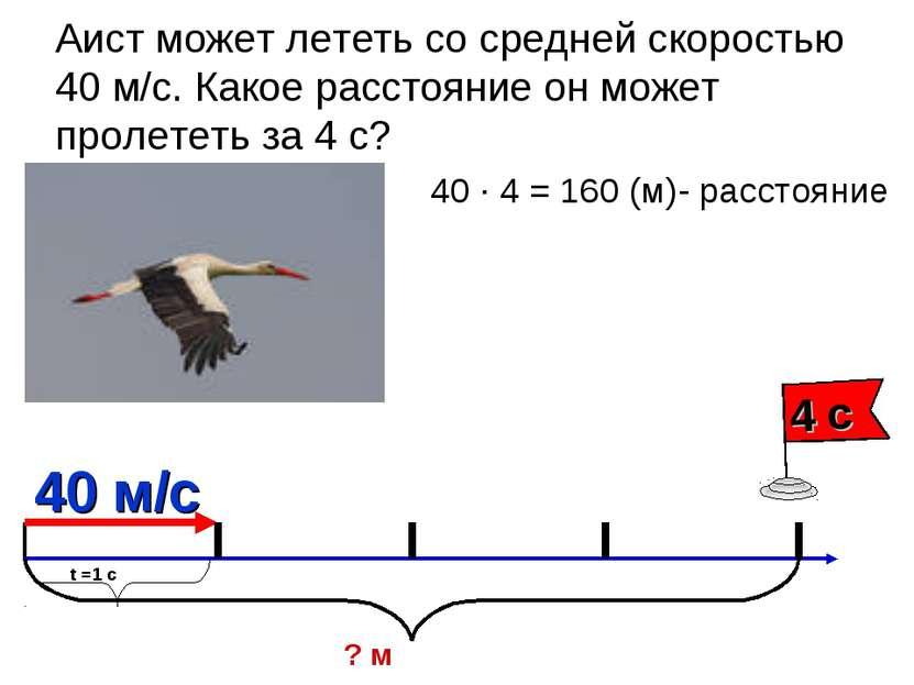 Аист может лететь со средней скоростью 40 м/с. Какое расстояние он может прол...