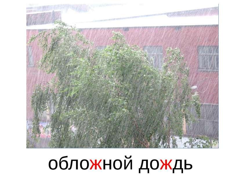 обложной дождь