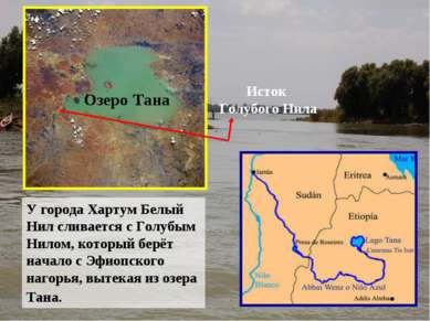 У города Хартум Белый Нил сливается с Голубым Нилом, который берёт начало с Э...