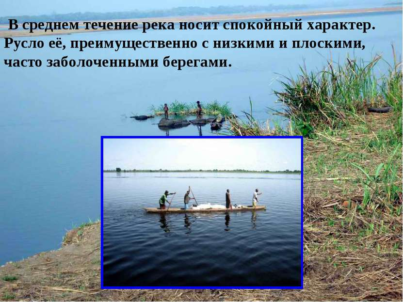 В среднем течение река носит спокойный характер. Русло её, преимущественно с ...