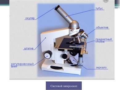 Световой микроскоп