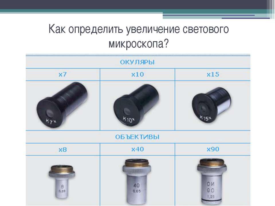 Как определить увеличение светового микроскопа?