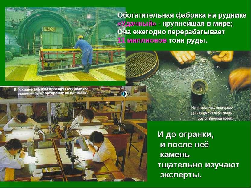 Обогатительная фабрика на руднике «Удачный» - крупнейшая в мире; Она ежегодно...