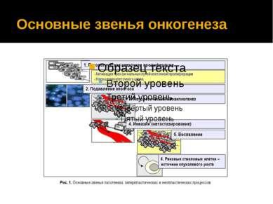 Основные звенья онкогенеза