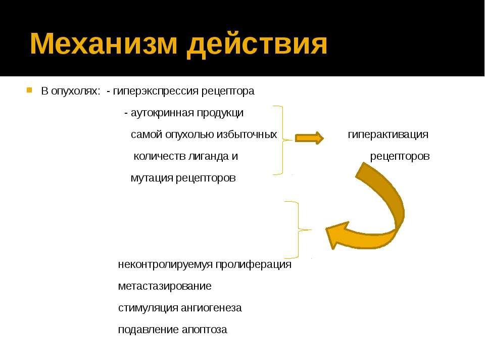 Механизм действия В опухолях: - гиперэкспрессия рецептора - аутокринная проду...