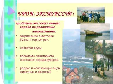 УРОК-ЭКСКУРССИЯ: проблемы экологии нашего города по различным направлениям: з...