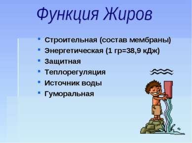 Строительная (состав мембраны) Энергетическая (1 гр=38,9 кДж) Защитная Теплор...
