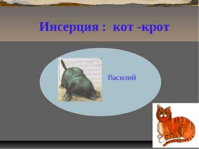 Василий Р Инсерция : кот -крот