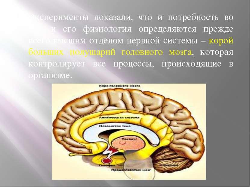 Эксперименты показали, что и потребность во сне, и его физиология определяютс...